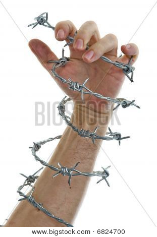Hand Holding A Barbed Wire
