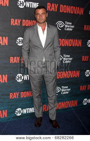 LOS ANGELES - JUL 9:  Liev Schreiber at the