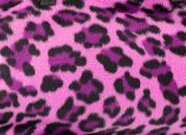 Pink and black faux fur leopard print backgound poster