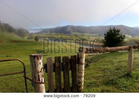 Gate To Paddock