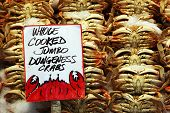 Stacks of cooked whole jumbo dungeness crabs poster