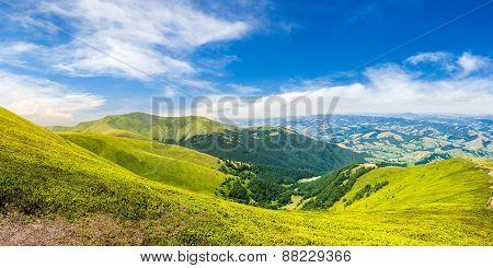 Summer Green Meadow In Mountain Panorama