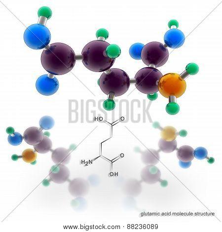 Glutamic Acid Molecule Structure