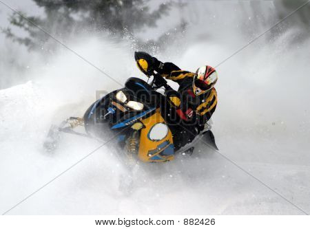Snowmobile Action