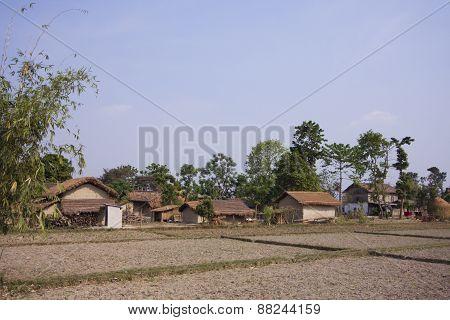 typical tharu farm near Lumbini, Terai, Nepal