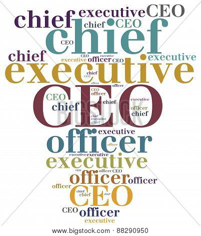 Ceo. Chief Executive Officer.