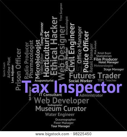 Tax Inspector Means Employment Career And Taxpayer