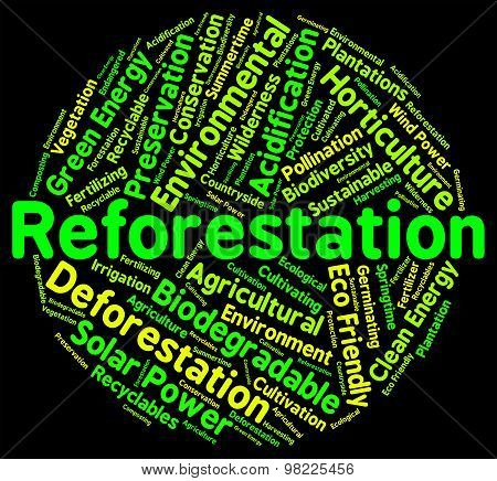 Reforestation Word Shows Again Woodlands And Words