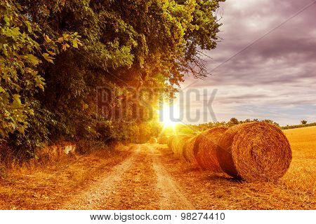 Countryside Summer Road
