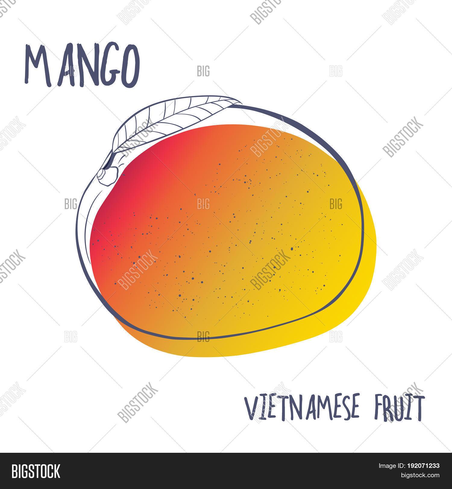 Mango Fruit Icon Hand Image Photo Free Trial Bigstock