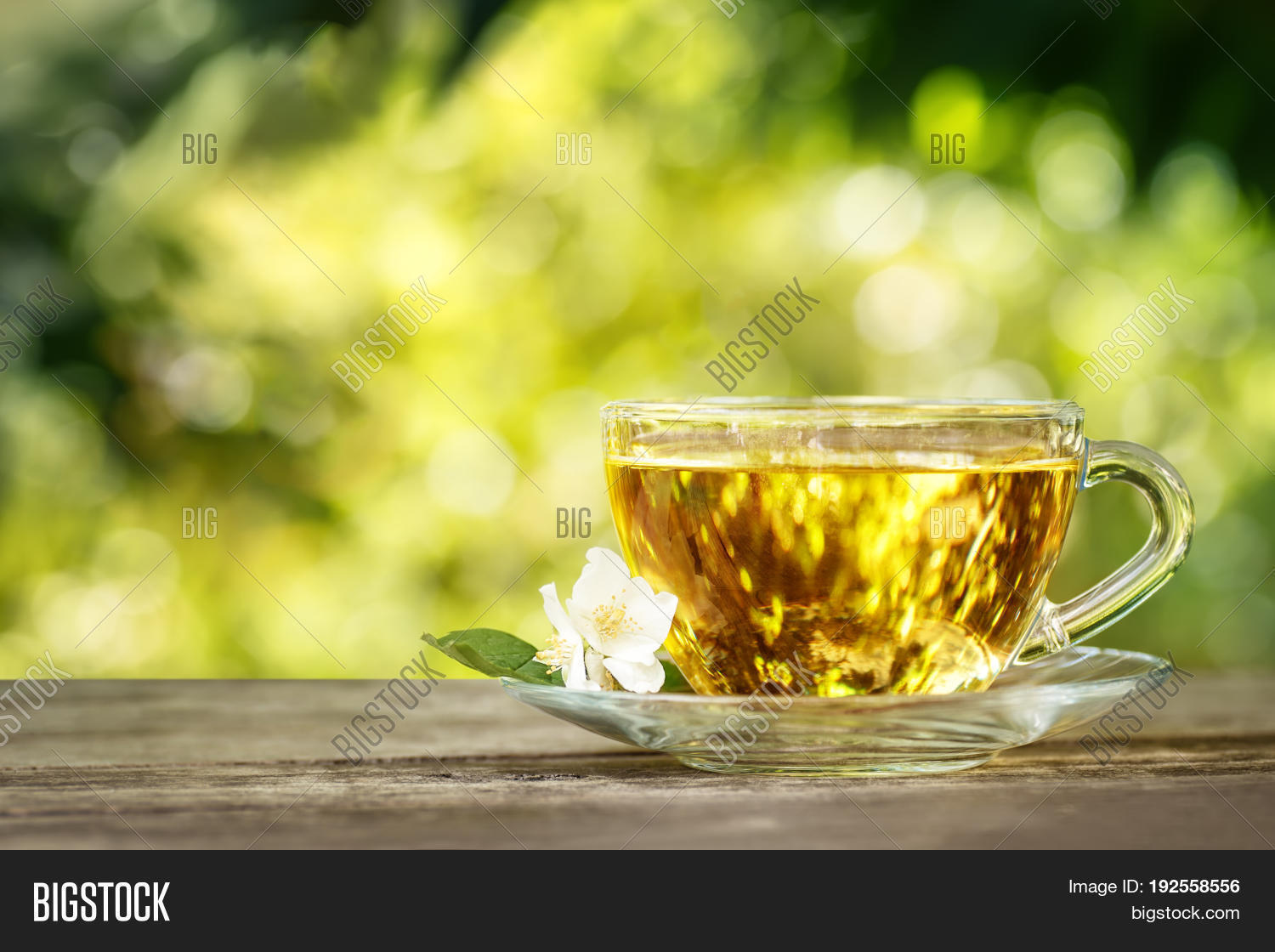 Jasmine Tea Jasmine Image Photo Free Trial Bigstock