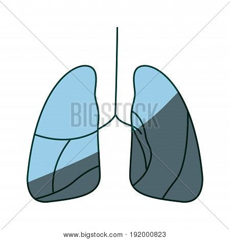 blue color shading hand drawing contour respiratory system vector illustration