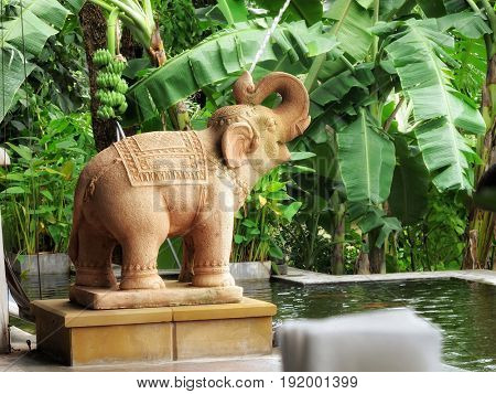 close up shot of garden pool fountain decoration in Thailand