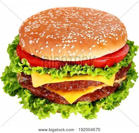 White background hamburger burger isolated single beef