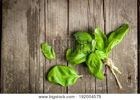 Bunch Of Basil On Wooden Table