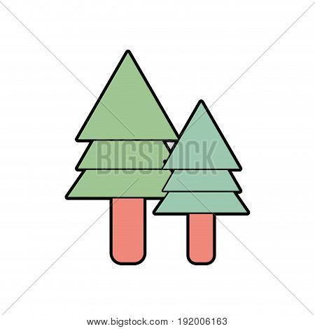 natural pine trees botany icons vector illustration