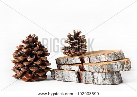 Wooden theme: cedar and pine cones wooden stump slices on white background
