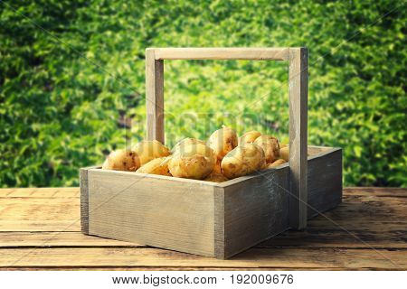Fresh potatoes in crate on wooden table and field with plants on background