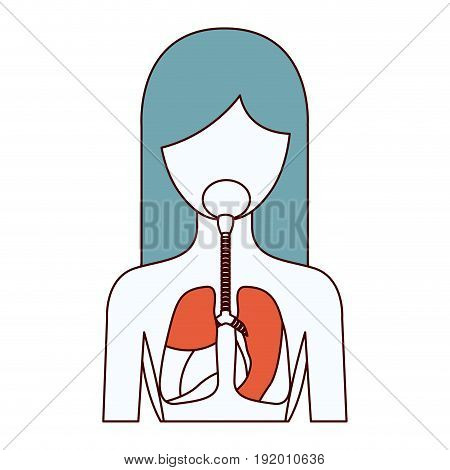color sections silhouette half body female person with respiratory system vector illustration
