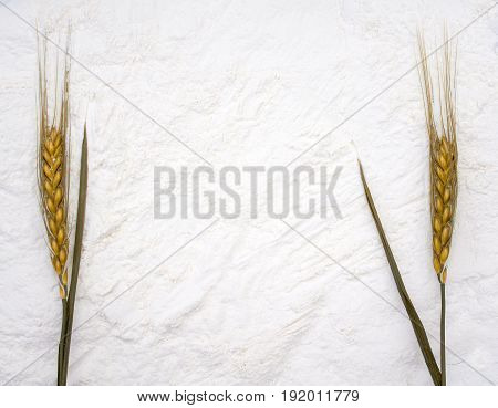 a background of crisp white flour and ripe ears on the sides