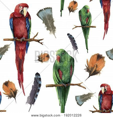 Watercolor seamless pattern with parrots and feathers. Hand painted red-and-green macaw and red-winged isolated on white background. Nature ornament with exotic tropical bird.