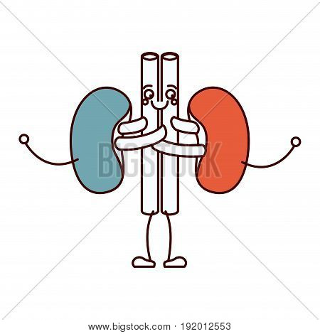 color sections silhouette caricature renal system of human body vector illustration