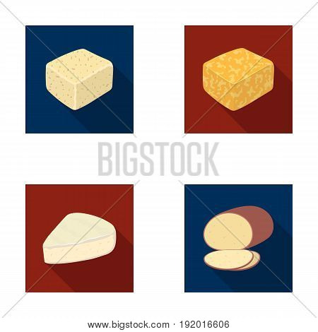 Brynza, smoked, colby jack, pepper jack.Different types of cheese set collection icons in flat style vector symbol stock illustration .