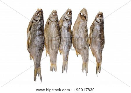 Five Dried Salted Roach Fishs On A Isolated White Background
