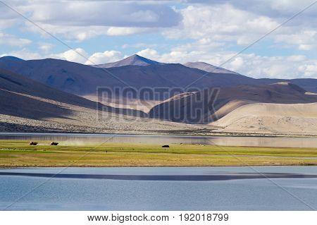 Mainland support with of Korzok village at Tso Moriri lake in the Himalayas mountains (Ladakh India)