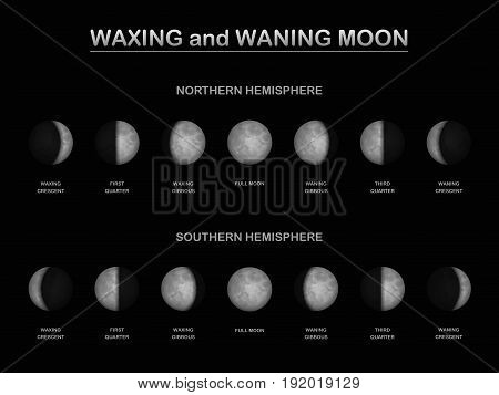 Moon phases - as seen from the northern and southern hemisphere of planet earth in comparison - different sequence of waxing and waning moon. Vector illustration.