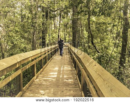 A man and a boy in the distance on a boardwalk in a tropical park in Florida retro look