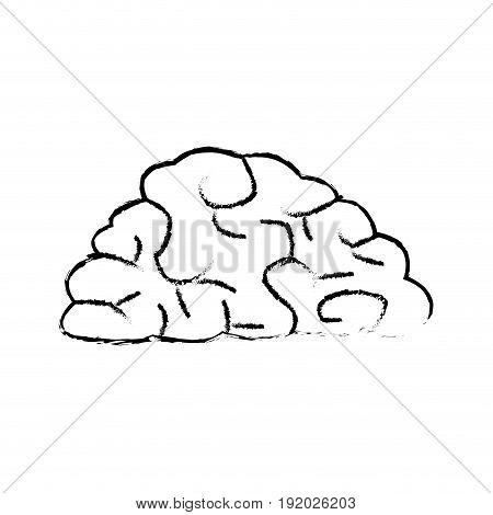 human brain organ health memory anatomy vector illustration