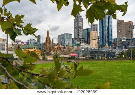 Melbourne Cbd, Central Business District View Framed By Autumn Leaves