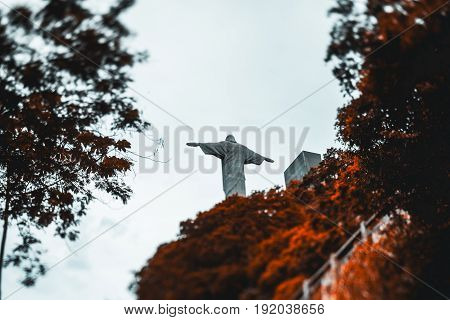 True tilt-shift rear view of Christ the Redeemer statue surrounded by ginger trees crowns view from bottom behind of Cristo Redentor monument on Corcovado Mountain through frame of orange trees