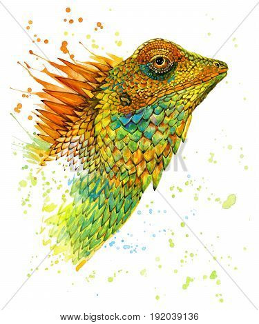 lizard watercolor illustration. Exotic tropical reptile illustration