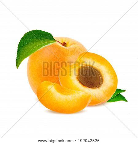Isolated apricot. Fresh cut apricot fruits isolated on white background with clipping path.