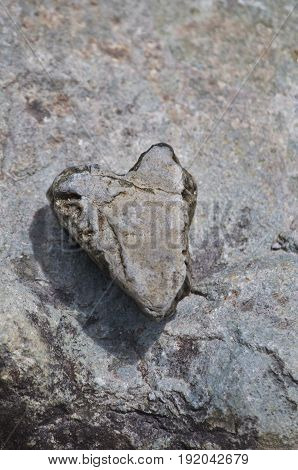 Background of heart rock on riverbed stone