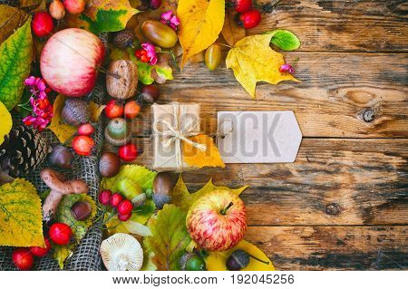 Autumn background with crop of mushrooms berries apples leaves an acorn nut gift box with tag on wooden table