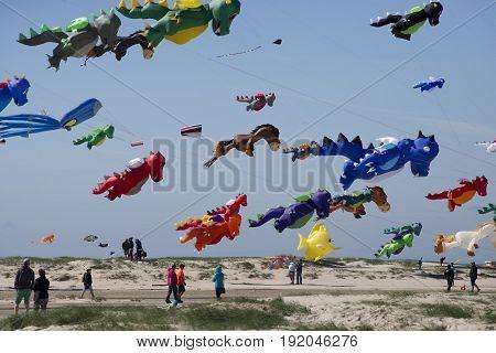 FANOE DENMARK JUNE 17 2017: Colorful dragon kites in the air over Fanoe beach. Fanoe Kite Fliers Meeting June 2017.