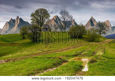 Woodshed Among Trees On A Hill By The Road In High Tatras