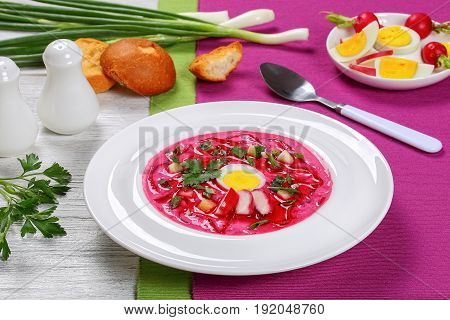 Vegetable Cold Summer Soup With Beet