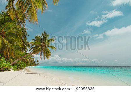 tropical sand beach in Maldives, beach vacation concept
