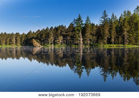 Green Forest And Blue Sky Perfectly Reflected On Dark Water Surface Of Lake Etang De La Gruere