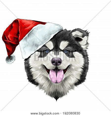 dog breed Alaskan Malamute puppy with his tongue hanging out head in a Santa hat on the side symmetry looks right sketch vector graphics color picture