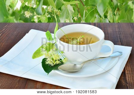 Cup of refreshing linden tea over wooden table under the shadow of a linden tree.