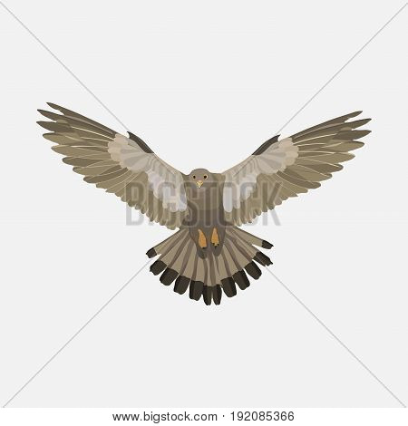 realistic eagle soaring eagle catching prey a symbol of freedom flat design image