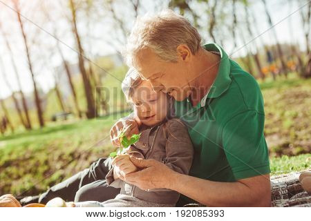 Side view of elderly man showing plant to granddaughter while spending time in park.