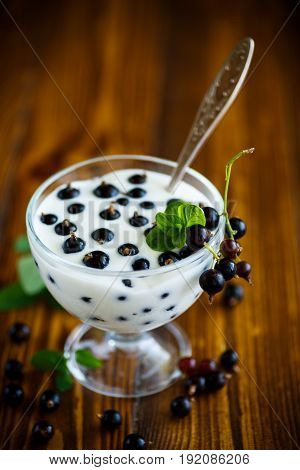 Sweet Greek yogurt with black currant berries on a wooden table