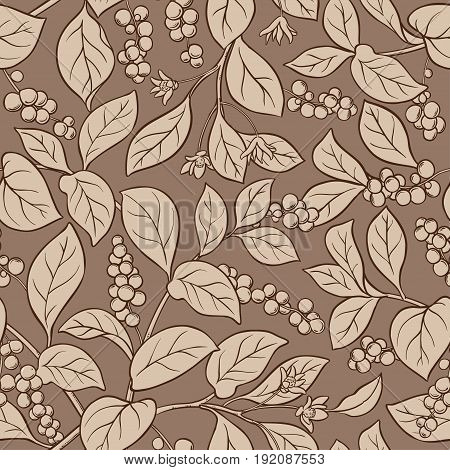 schisandra vector branches pattern on color background
