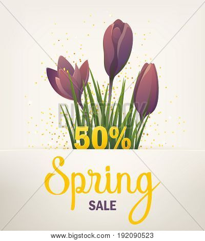 Spring banner. Big Offer Sale poster for Mothers Day, Spring, Summer. Banner with flowers, purple crocus. Floral background. Vector illustration EPS10 for flyer design, online shopping, advertising, magazine.